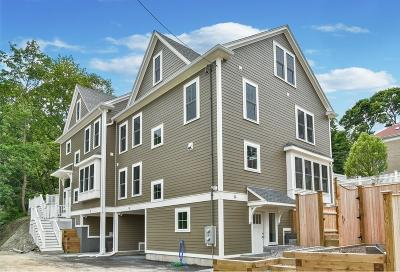 MA-Suffolk County Condo/Townhouse For Sale: 14 Rockview St #14