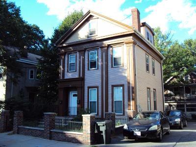 Boston Multi Family Home New: 102 Mount Pleasant Ave