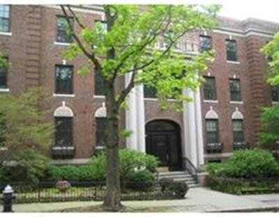 Brookline Rental For Rent: 15-17 James Street #3