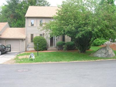 Stoughton Condo/Townhouse For Sale: 164 Mill #164