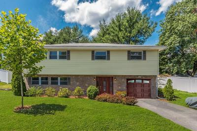 Needham Single Family Home Contingent: 99 Damon Rd
