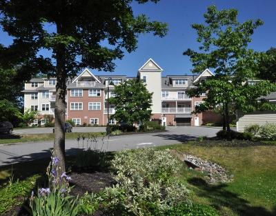 Concord Condo/Townhouse Under Agreement: 95 Conant Street #221