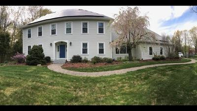Westborough Single Family Home For Sale: 181 Ruggles St