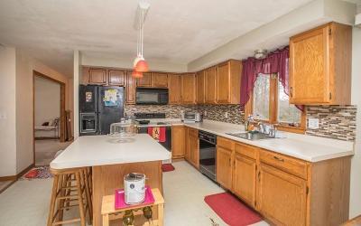 Taunton Single Family Home For Sale: 19 Tania Dr.