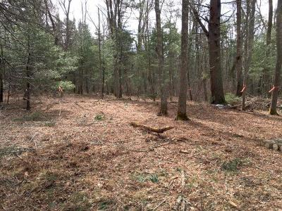 Plympton Residential Lots & Land For Sale: 130 County Rd.