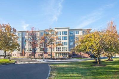 Malden Rental For Rent: 180 Eastern Avenue #527