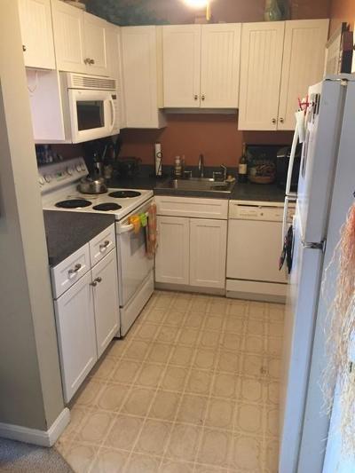 Quincy Condo/Townhouse For Sale: 77 Adams #911