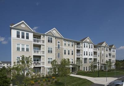 Weymouth Condo/Townhouse Under Agreement: 110 Trotter Road #102