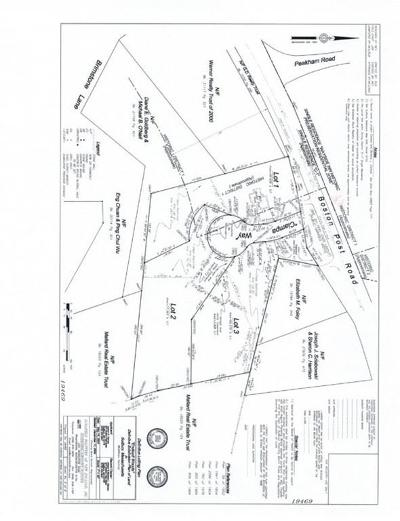 Sudbury Residential Lots & Land For Sale: 821-(1-3) Boston Post Rd