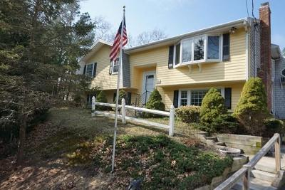 Plymouth Single Family Home For Sale: 15 Chipmunk Lane