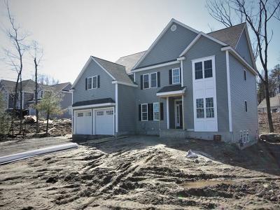 Hudson Single Family Home For Sale: 17 Exeter Road