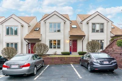 Foxboro Condo/Townhouse For Sale: 41 Elm St #A3