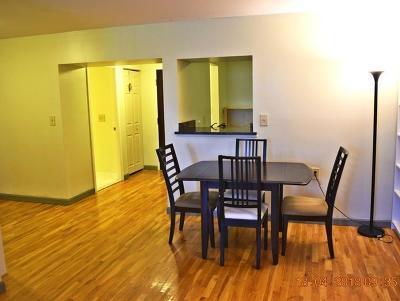 Malden Condo/Townhouse For Sale: 20 Daniels St #118