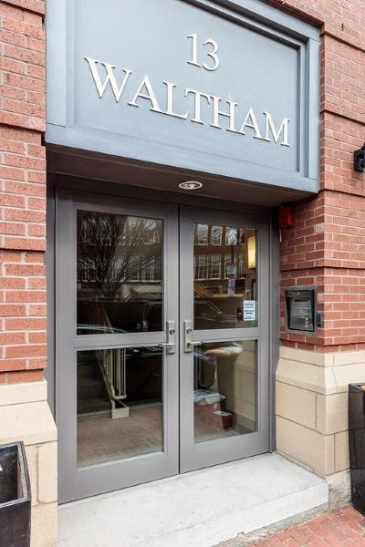 Boston Condo/Townhouse New: 13 Waltham #B309