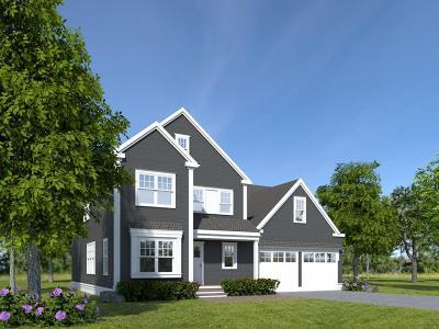 Natick Single Family Home For Sale: 84 Speen Street