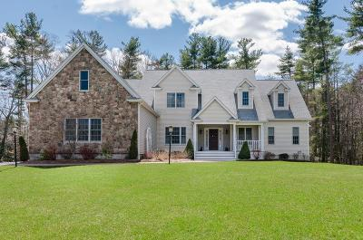 Holbrook Single Family Home New: 2 Chestnut Lane