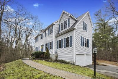 Franklin Single Family Home For Sale: 4 Sierra Dr
