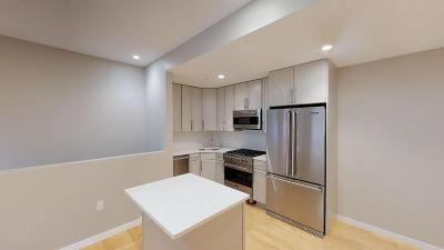 Condo/Townhouse Extended: 246 Boston Street #1
