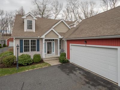 Ashland Single Family Home For Sale: 101 Braeburn Lane #101