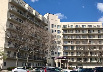 Quincy Condo/Townhouse Under Agreement: 133 Commander Shea Blvd #302