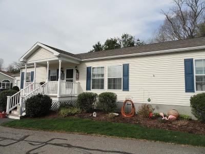 Brockton Single Family Home For Sale: 20 Skyview Drive