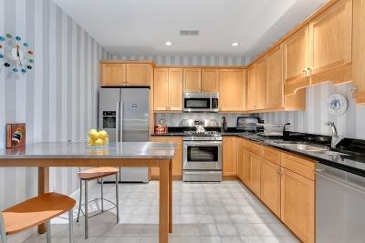 Quincy Condo/Townhouse For Sale: 44 Tilden Circle #44