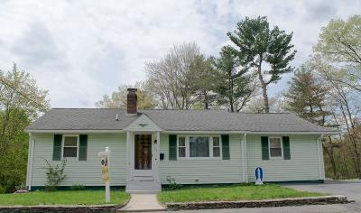 Hudson Single Family Home For Sale: 24 Meadowbrook