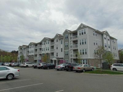 Braintree Condo/Townhouse Under Agreement: 426 John Mahar Hwy #107