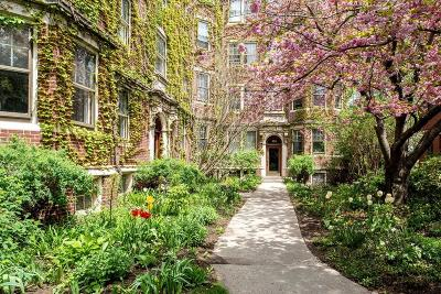 Condo/Townhouse Under Agreement: 361 Harvard Street #7