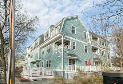 Somerville Condo/Townhouse Sold: 135 Willow Ave #1