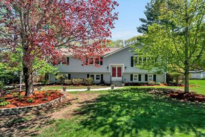 Framingham Single Family Home Under Agreement: 19 Willowbrook Drive