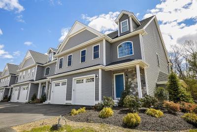 Foxboro Condo/Townhouse For Sale: 1 Roseland St #A-9