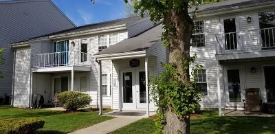 Natick Condo/Townhouse Under Agreement: 20 Walden Drive #18