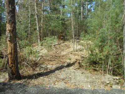 Marshfield Residential Lots & Land For Sale: California St