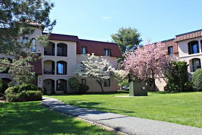 Brockton Condo/Townhouse For Sale: 685 Oak St #22-1