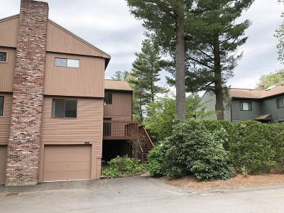Ashland Condo/Townhouse Contingent: 89 Spyglass Hill Dr #89
