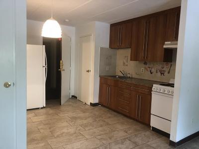 Framingham Condo/Townhouse For Sale: 126 Beaver St #12