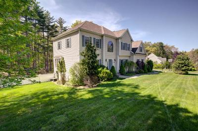 Holliston Single Family Home For Sale: 18 Noel Drive