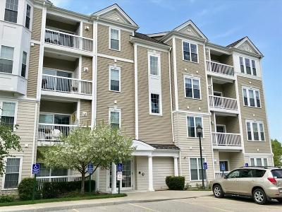 Waltham Condo/Townhouse For Sale: 132 Clocktower Drive #4102