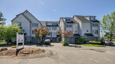 Saugus Condo/Townhouse Under Agreement: 2 Atkinson Dr #17