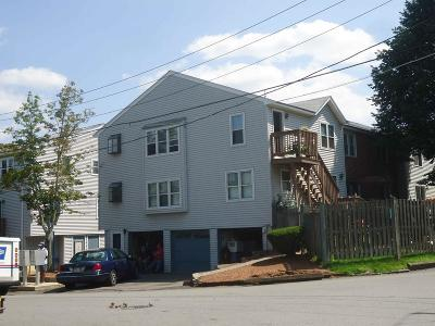 Lowell Condo/Townhouse New: 30 Angle Street #2
