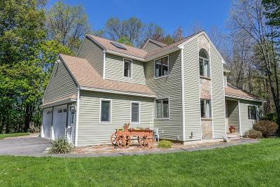 Kingston Single Family Home For Sale: 8 Grand View Ter