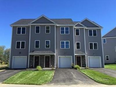 chelmsford Condo/Townhouse Under Agreement: 6 Collins Circle #1