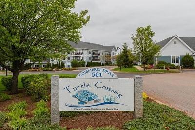 Braintree Condo/Townhouse Contingent: 501 Commerce Dr #1313