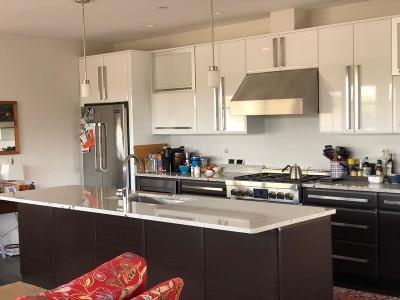 Needham Rental For Rent: 50 Dedham Ave #43 PH