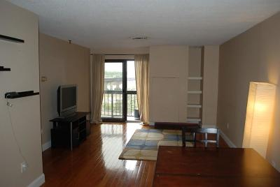 Quincy Condo/Townhouse New: 90 Quincy Shore Drive #510