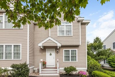 Canton Condo/Townhouse New: 33 Turtle Brook Rd #33