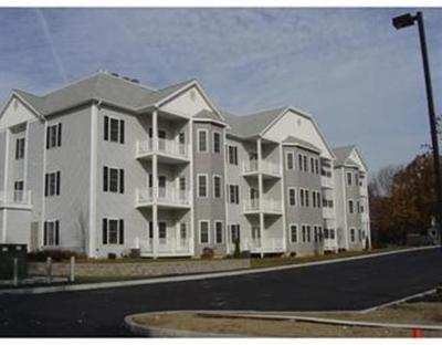 Brockton Condo/Townhouse New: 10 Felton St #309
