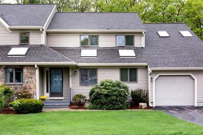 Franklin Condo/Townhouse New: 6 Birchtree Cir #6