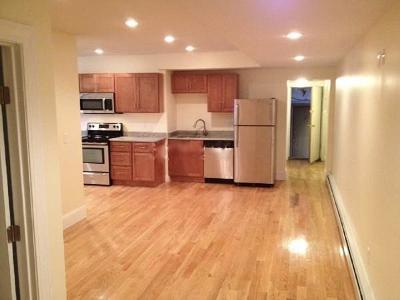 Boston Condo/Townhouse New: 41 Park Dr #B